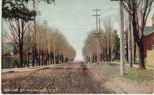 chromo-lith postcard